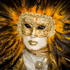 Venician Lion by Arti Fakts - News & Events World Events ( lion, carnival, mask, feathers, artifakts, king, feather, sun, disguised, venice, costume, venise, venezzia,  )