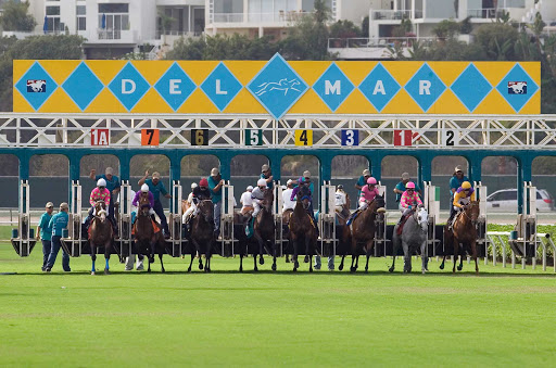 San-Diego-Del-Mar-Races - Del Mar racehorses at the starting gate.