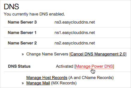Manage Power DNS option
