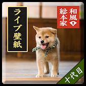和風総本家/十代目豆助(冒険02)ライブ壁紙
