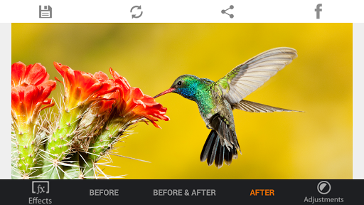 Photo Editor HDR FX Pro  screenshots 2