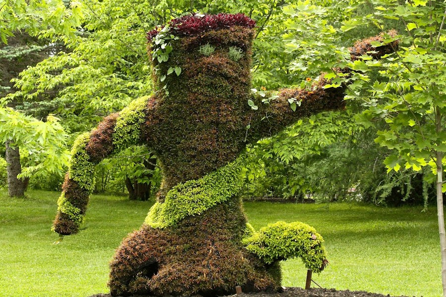 Alive! A living plant sculpture by Ernie Easter - Artistic Objects Still Life (  )