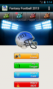 Fantasy Football 2013 HMT+ - screenshot thumbnail