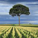 Tile Swap Landscape Images icon
