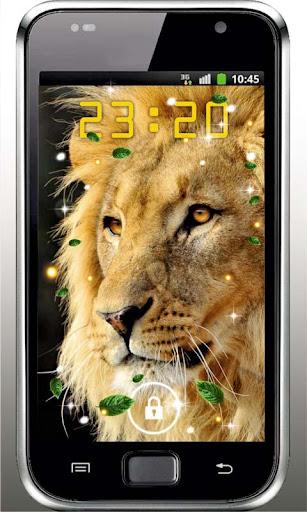 Lion African live wallpaper