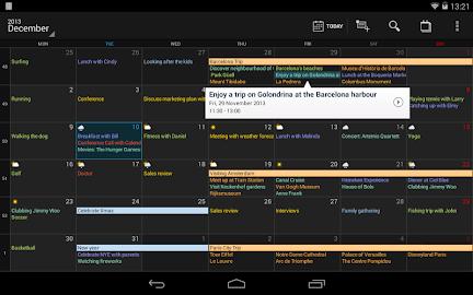 DigiCal Calendar Screenshot 32