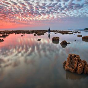 ... the fish bones by Keris Tuah - Landscapes Sunsets & Sunrises ( water, 500px, keris, clouds, tuah, stone, cloud, seascape, landscape, keristuah )