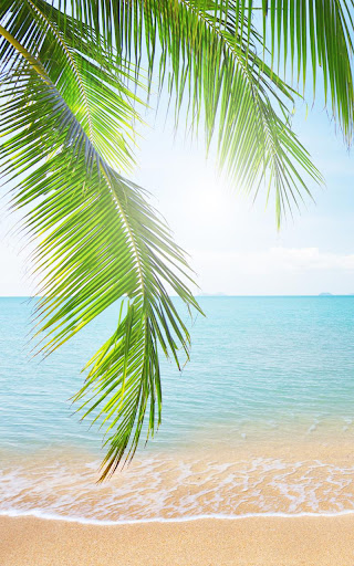 Tropical Beach Live Wallpaper 18.0 screenshots 3