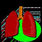 Sonidos Pulmonares icon