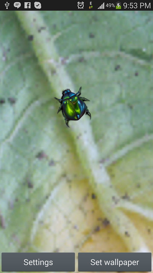 Green Bug Live Wallpaper - screenshot
