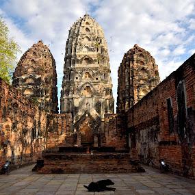 Sukhothai Historical Park by Pier Riccardo Vanni - Buildings & Architecture Public & Historical (  )