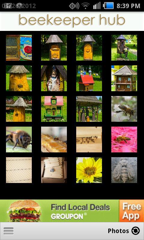 Beekeeper Hub- screenshot