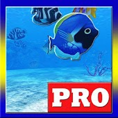 AQUARIUM 3D PRO LIVE WALLPAPER
