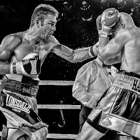 Chris The Heat van Heerden by Alexius van der Westhuizen - Sports & Fitness Boxing ( champion, lonsdale, black and white, contest, sport, boxing, activity, triumph,  )