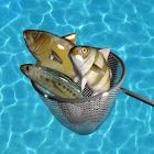 Eco Fishing - Pesca ecológica icon