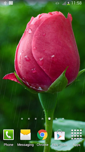 Rain Rose Live Wallpaper  screenshots 2