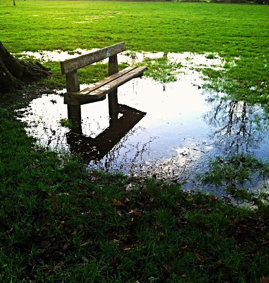 Park by Joanna Kordecka - Instagram & Mobile iPhone ( park )