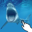 Magic touch: Attacking shark icon