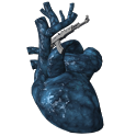Fallout 3 Guns icon