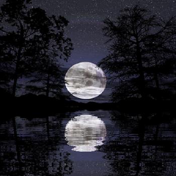 Live Wallpaper Moonlight x