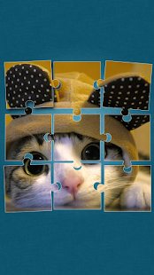 Cute Cats Jigsaw Puzzle 1