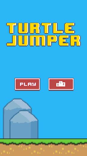 Turtle Bros Jumper
