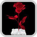 3D Icy Red Rose Wallpaper icon