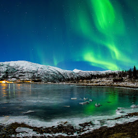 ms Aurora by Rune Nilssen - Landscapes Starscapes ( water, northlight, green, aurora, pentax, norway, lodingen, fjord, k-3, winter, cold, borealis, ice, kanstad, snow, dance )