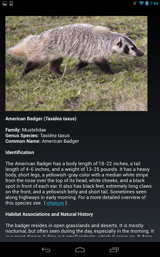 UCSC Wildlife Guide- screenshot
