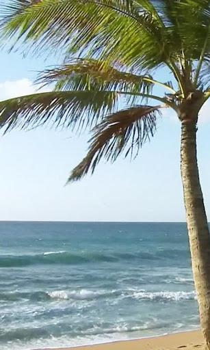 Foamy surf