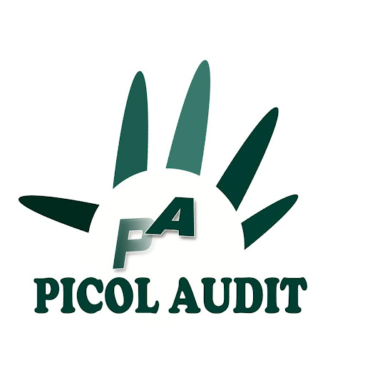 PICOL AUDIT