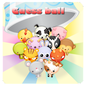 guess ball for kids