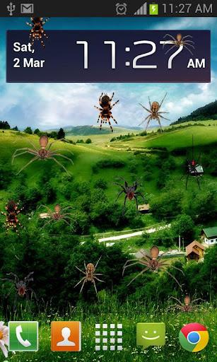 Spider Prank