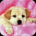 Puzzle - Puppies download