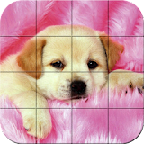 Puzzle - Puppies file APK Free for PC, smart TV Download