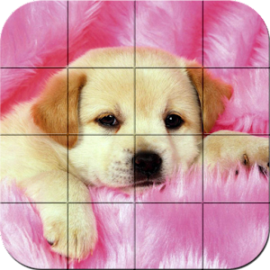 Puzzle – Puppies for PC and MAC