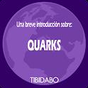 Quarks. Gell-Mann y Zweig icon