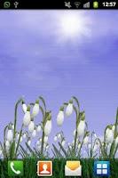 Screenshot of Snowdrops Live Wallpaper
