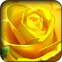 Yellow 3d Wallpapers icon