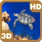 Turtle Swimming Coral Reef icon