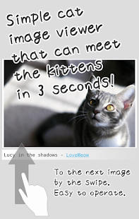 Kittens Soon- screenshot thumbnail