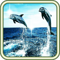 Dolphin Racing live wallpaper icon