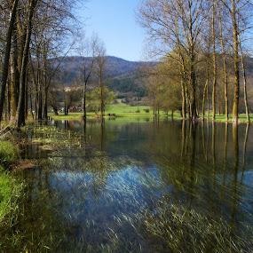 River Gacka by Gordana Kvajo - Landscapes Waterscapes ( gacka, croatia, river )