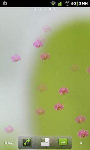 蘭花動態壁紙