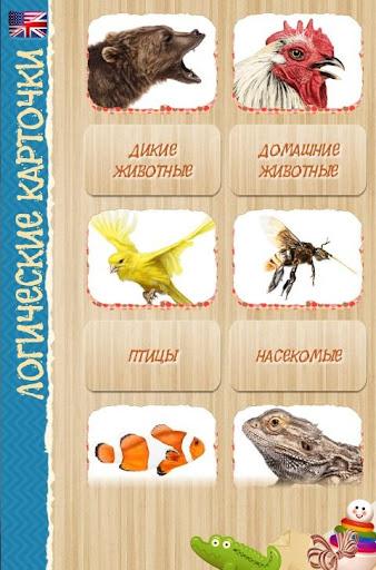 Логические карточки природа