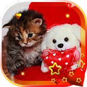 Valentine Kitty live wallpaper