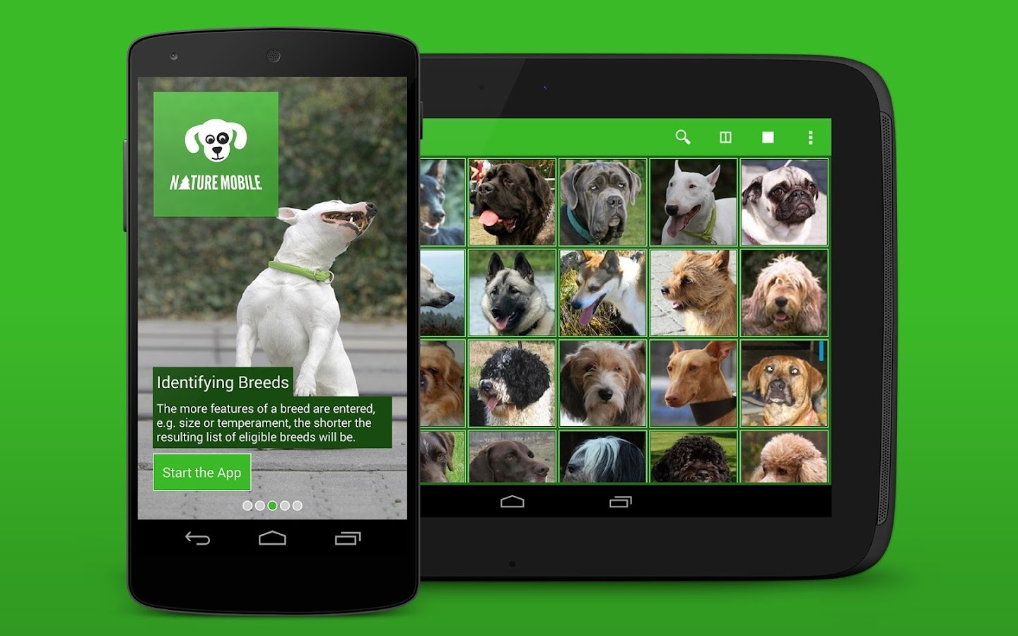 iKnow Dogs 2 LITE - screenshot