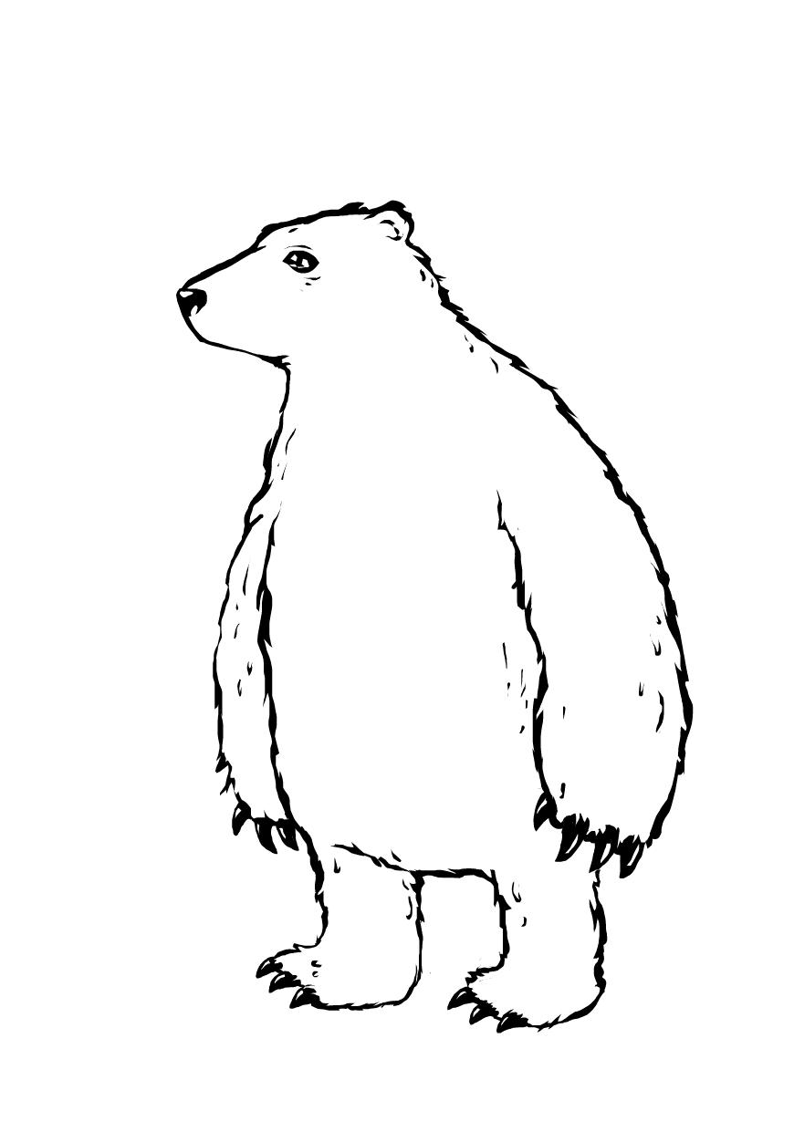 Uncategorized Drawings Of Polar Bears 8 dress up the polar bear drawings sketchport bear