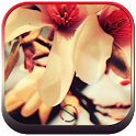 Flower - Start Theme icon