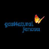 Gas Natural Fenosa - Oficina V